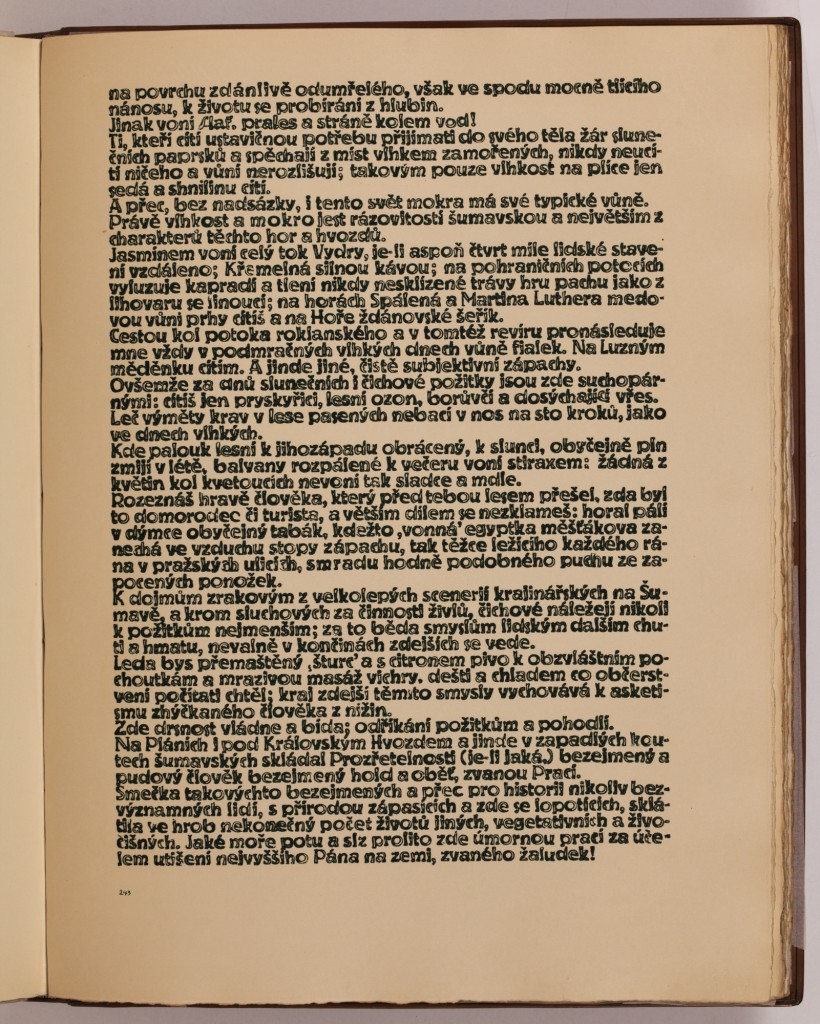 str. 243