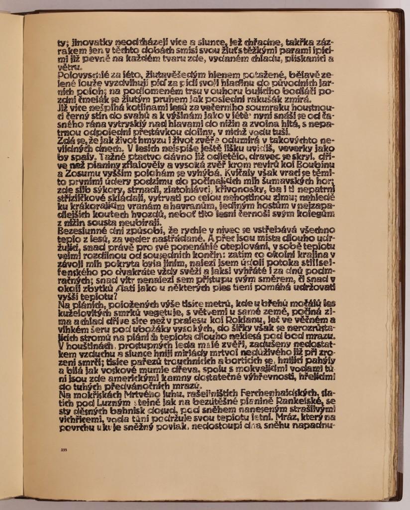 str. 233