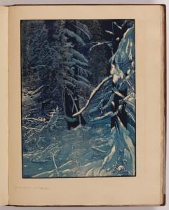 Zima v pralese pod Luzným