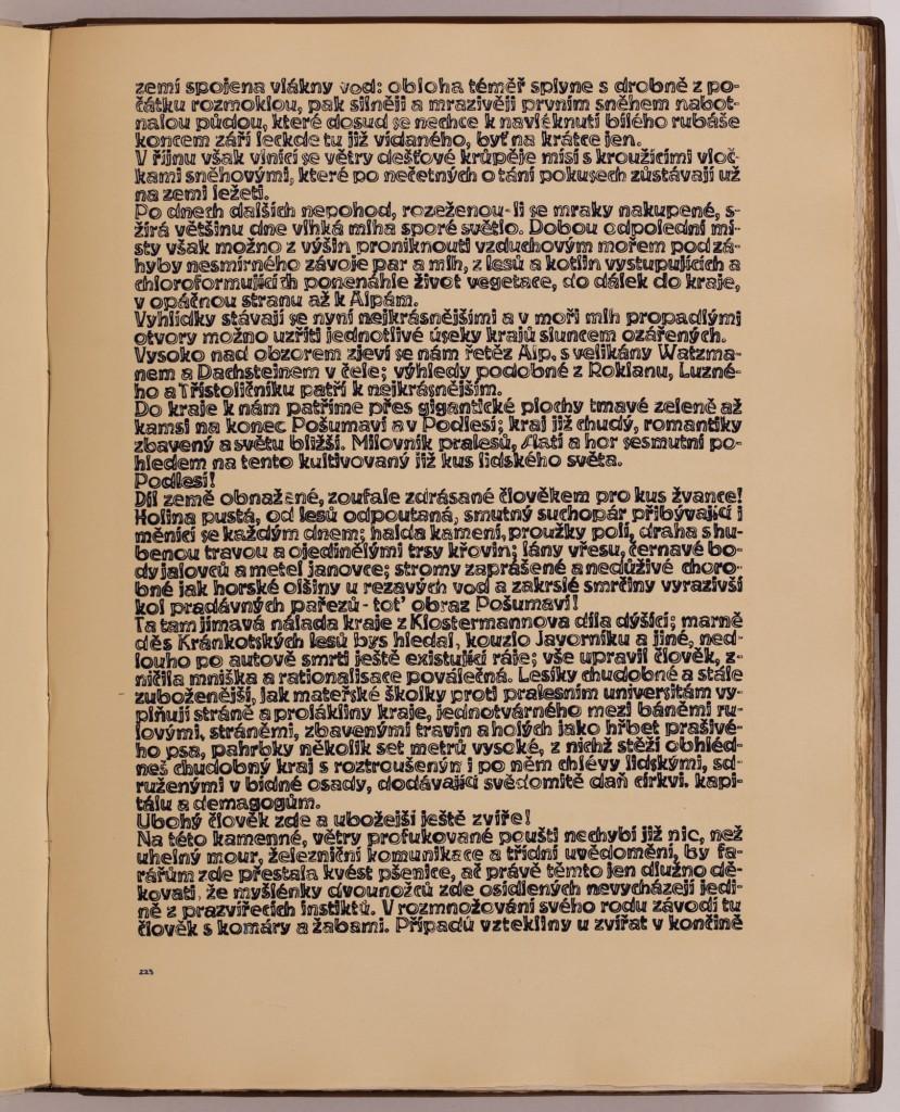 str. 223