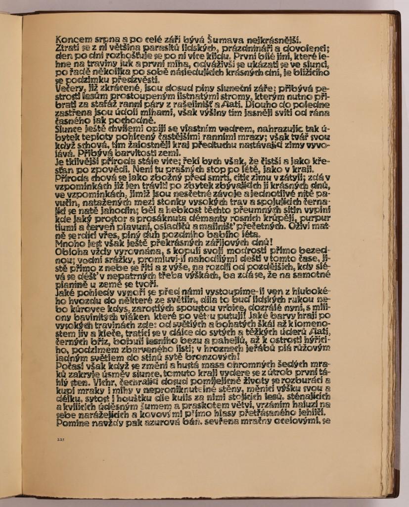 str. 221