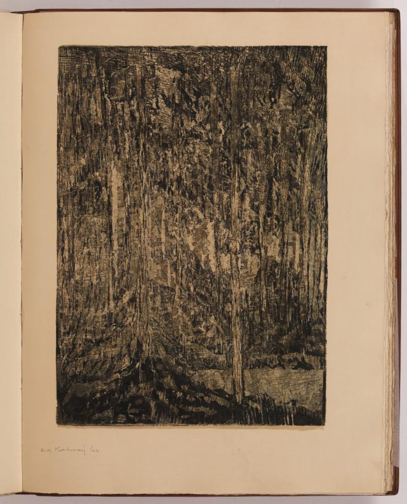 Habrový les