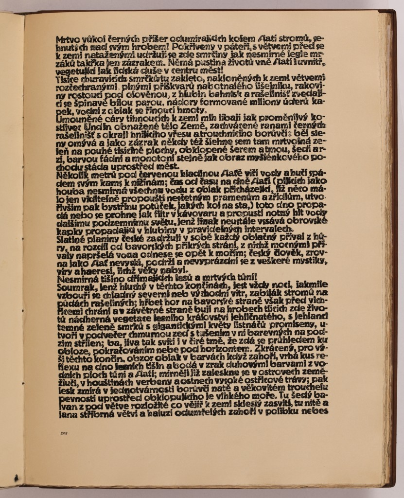 str. 205